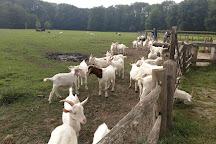 Geitenboerderij Ridammerhoeve, Amstelveen, The Netherlands