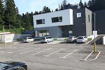 Aerodium Logatec, Logatec, Slovenia