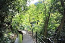 Kawazu Nanadaru Waterfalls, Kawazu-cho, Japan