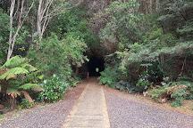 Spray Tunnel, Zeehan, Australia