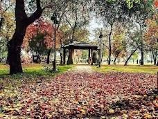 Kachnar Park islamabad