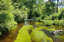 Connetquot River State Park Preserve, Bohemia, United States