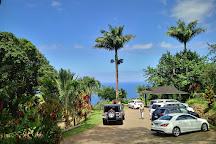 Ke'anae Arboretum, Maui, United States