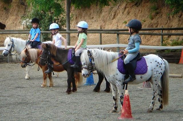 Centre d' Equitació Poni Club Catalunya (Barcelona Horse Tours)