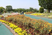 Kurume Hyakunen Park, Kurume, Japan