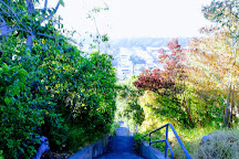 Hidden Garden Steps, San Francisco, United States