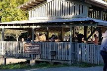 Tilden Park Little Farm, Berkeley, United States