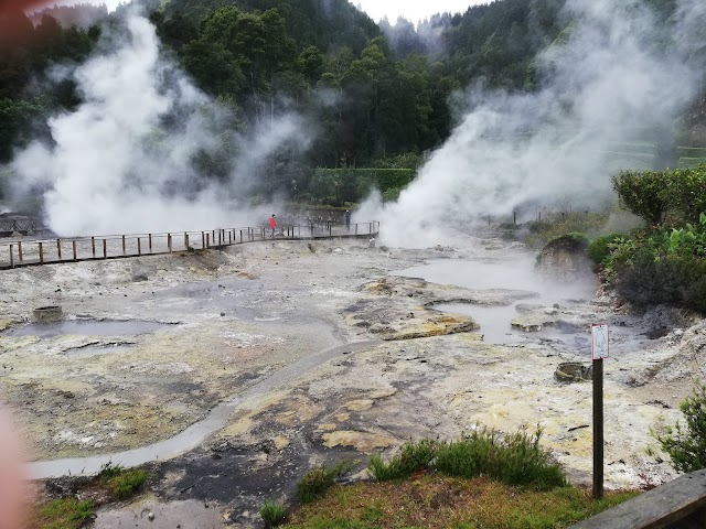 Lagoa das Furnas Hotsprings. São Miguel - Açores