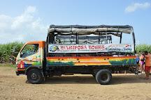 Mariposa Tours, Bayahibe, Dominican Republic