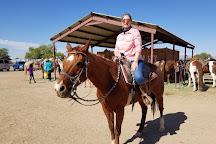 KOLI Equestrian Center, Chandler, United States
