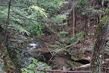 Doane's Falls, Royalston, United States