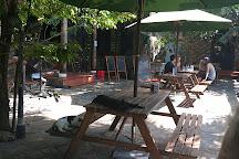 Jack's Cat Cafe, Hoi An, Vietnam
