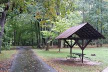 Bluemont Park, Arlington, United States