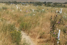 Sacajawea Cemetery, Fort Washakie, United States