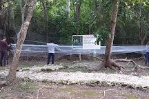 Shipstern Conservation & Management Area, Sarteneja, Belize