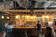 Twin Leaf Brewery, Asheville, United States