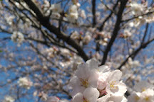 Heiwadai 2 Go Park, Nagareyama, Japan