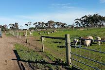 Animal Land Children's Farm, Diggers Rest, Australia
