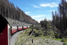 Harzer Schmalspurbahnen, Wernigerode, Germany