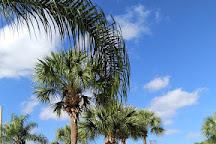 Congo River Golf East Orlando, Orlando, United States