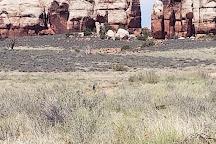 Elephant Hill, Canyonlands National Park, United States