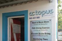 Octopus Diving Center, Praia da Vitoria, Portugal