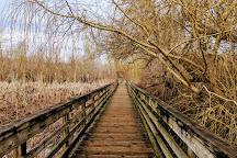Juanita Bay Park, Kirkland, United States