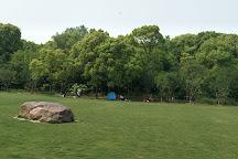 Kunshan Forest Park, Kunshan, China