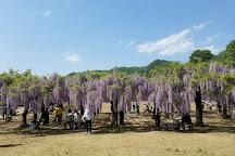 Fuji Park, Wake-cho, Japan