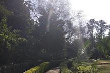 Jahanpanah City Forest, New Delhi, India