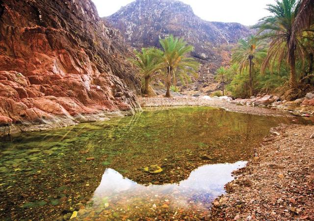 Socotra Island Nature Sanctuary