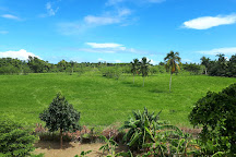Parque Nacional El Choco, Cabarete, Dominican Republic