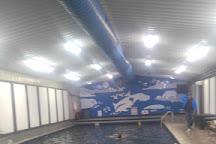 Chena Hot Springs Resort, Chena Hot Springs, United States