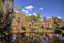 University of Florida, Gainesville, United States