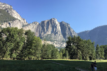Yosemite Valley Biking, Yosemite National Park, United States
