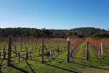 Darlington Vineyard, Orford, Australia