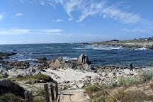 Asilomar State Beach, Pacific Grove, United States