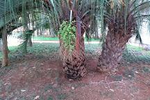 Fonte Luminosa, Pocos de Caldas, Brazil