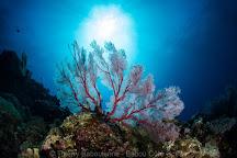 Babou Cote Ocean, Hienghene, New Caledonia