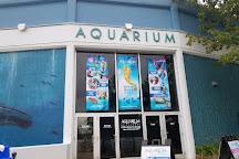 Aquarium of Niagara, Niagara Falls, United States