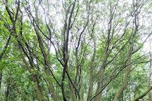 Alyn Waters Country Park, Gwersyllt, United Kingdom