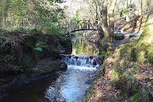 Gosford Forest Park, Armagh, United Kingdom