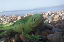 Latchi Beach, Latchi, Cyprus