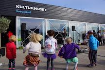 Kulturhuset Islands Brygge, Copenhagen, Denmark