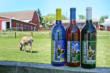 Swedish Hill Winery, Romulus, United States