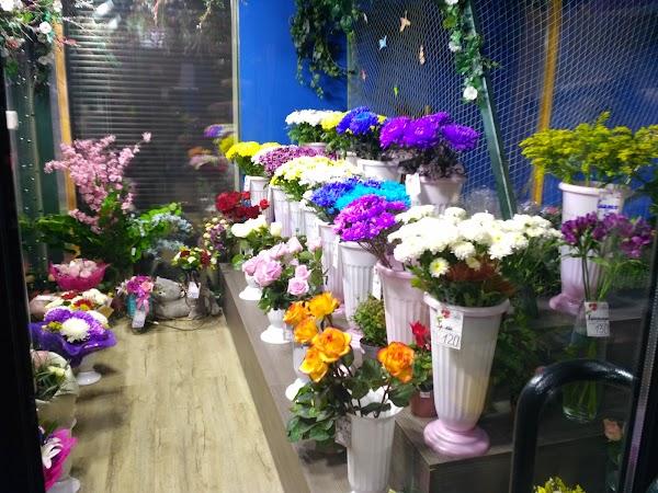 Букет пионы, цветы оптом улан-удэ крона