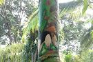 Talamanca Family Art