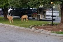 Ennis Lion's Club Park, Ennis, United States