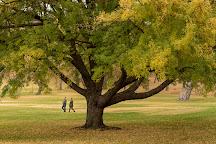 Moore Park, Klamath Falls, United States