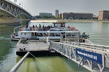 Petofi Bridge, Budapest, Hungary